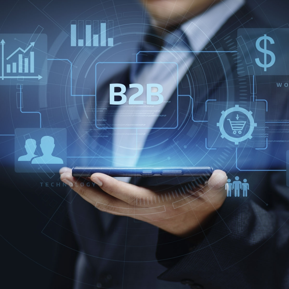 B2B and B2C systems